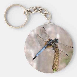 Dragonfly! Basic Round Button Keychain