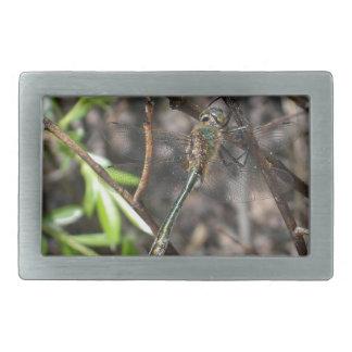Dragonfly Belt Buckle