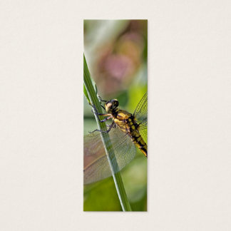 Dragonfly Bookmark Mini Business Card