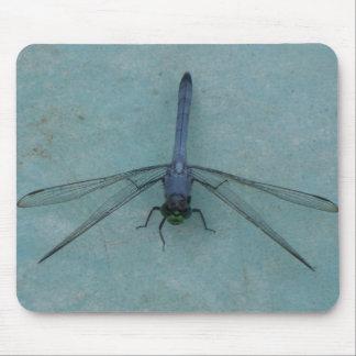 Dragonfly Buglips Mousepad