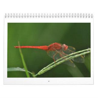 Dragonfly Calendar