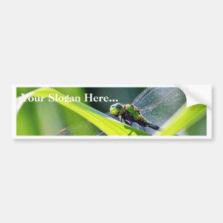 Dragonfly Car Bumper Sticker