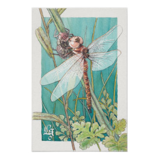 Dragonfly card 6 poster