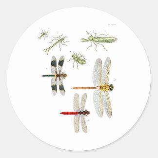dragonfly-clip-art-4 classic round sticker
