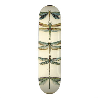 Dragonfly Collection by Chariklia Zarris Skateboard Deck
