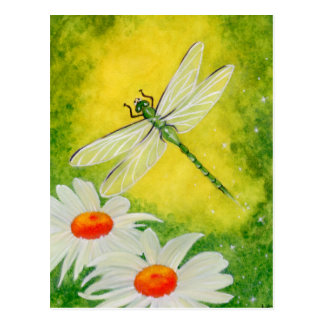 Dragonfly Daisies Postcard