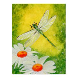 Dragonfly Daisies Postcard