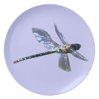 Dragonfly Damsel Fly Insect-lovers Gift Series Party Plate