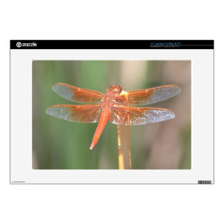 "Dragonfly Decals For 15"" Laptops"