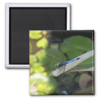 Dragonfly Dragonflies Magnet