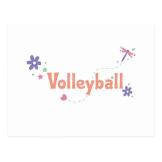DragonFly Garden Volleyball Postcard