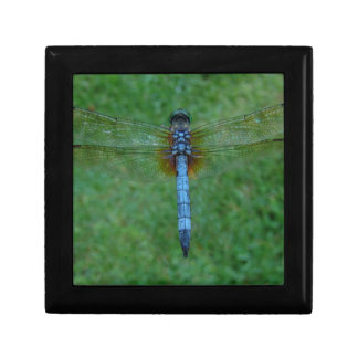 dragonfly jewelry boxes