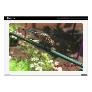 "Dragonfly Gifts 17"" Laptop Skin"