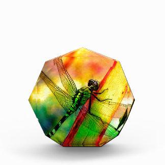DRAGONFLY GREEN ON GOLD.jpg Acrylic Award