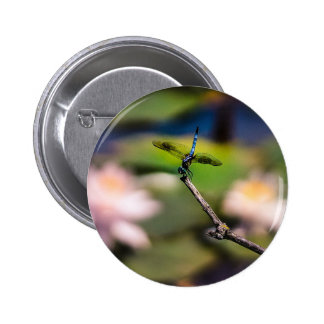 Dragonfly Handstand by Erina Moriarty Photography Pinback Button