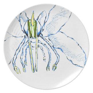 Dragonfly I Fly Plates
