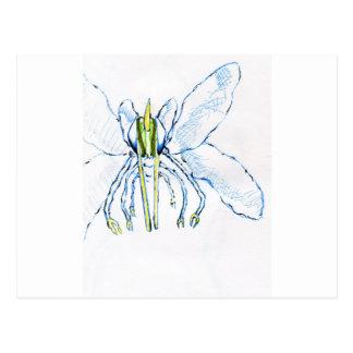 Dragonfly I Fly Postcard