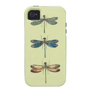 Dragonfly Illustrations iPhone 4/4S Cases