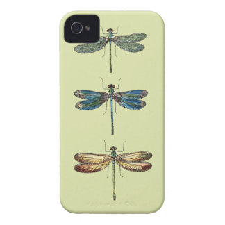 Dragonfly Illustrations iPhone 4 Cover