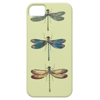 Dragonfly Illustrations Case For iPhone 5/5S