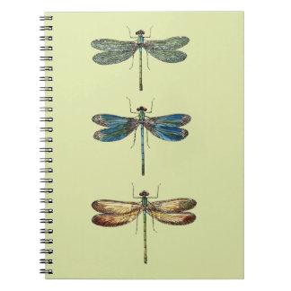 Dragonfly Illustrations Spiral Notebook