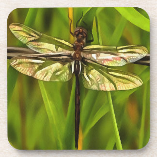 Dragonfly In Brown And Yellow Beverage Coaster