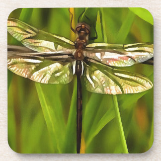Dragonfly In Brown And Yellow Drink Coaster