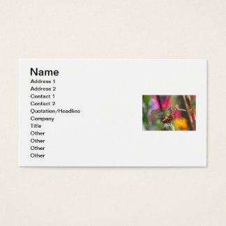 Dragonfly in Colorful Garden Business Card
