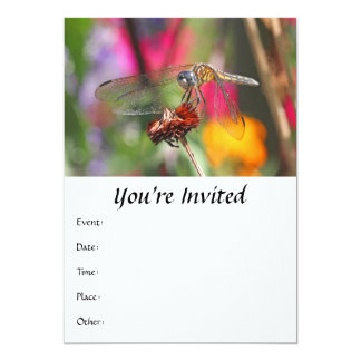 Dragonfly in Colorful Garden 5x7 Paper Invitation Card