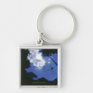 Dragonfly in flight, flapping wings keychain