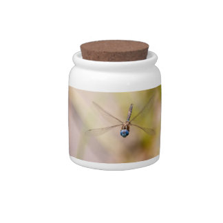 Dragonfly in Flight Photo Candy Jar