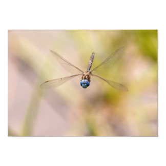 Dragonfly in Flight Photo 5x7 Paper Invitation Card