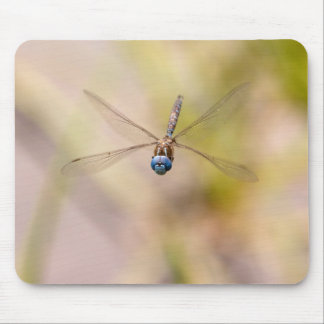 Dragonfly in Flight Photo Mouse Pad