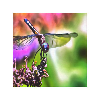 Dragonfly In Green and Blue Canvas Print