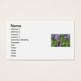 Dragonfly in Lavender Garden Business Card