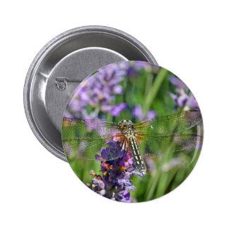 Dragonfly in Lavender Garden Button