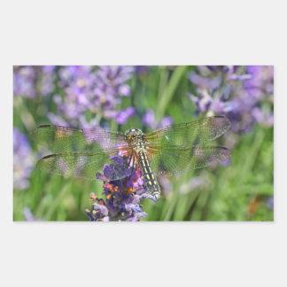 Dragonfly in Lavender Garden Rectangular Sticker