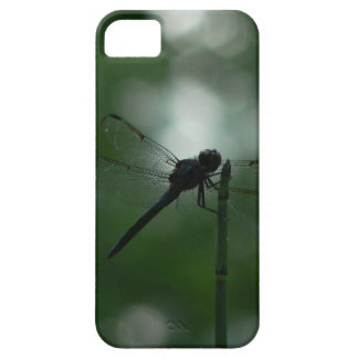 Dragonfly in Silhouette on Horsetail Rush iPhone 5 Covers