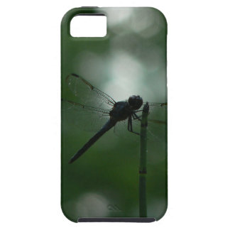 Dragonfly in Silhouette on Horsetail Rush iPhone 5 Case