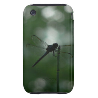 Dragonfly in Silhouette on Horsetail Rush iPhone 3 Tough Case
