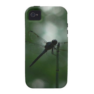 Dragonfly in Silhouette on Horsetail Rush iPhone 4 Cover