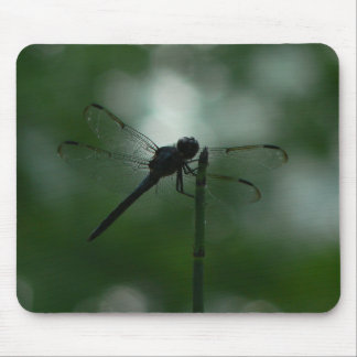 Dragonfly in Silhouette on Horsetail Rush Mouse Pad