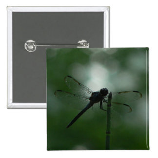 Dragonfly in Silhouette on Horsetail Rush Pinback Button