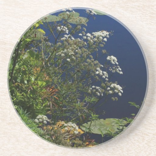 dragonfly in the greenery beverage coaster