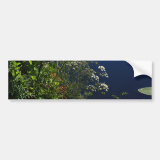 dragonfly in the greenery car bumper sticker
