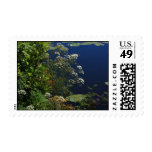 dragonfly in the greenery postage stamps