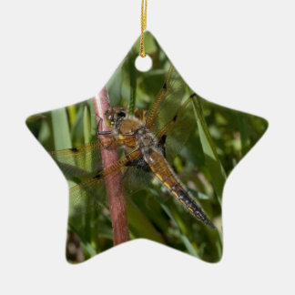 Dragonfly in the Weeds Ceramic Ornament