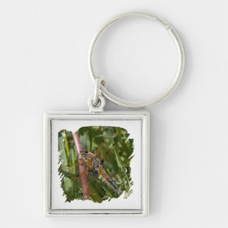 Dragonfly in the Weeds Key Chain