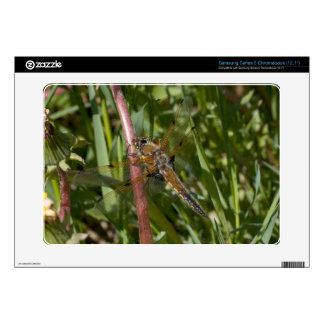 Dragonfly in the Weeds Samsung Chromebook Skin