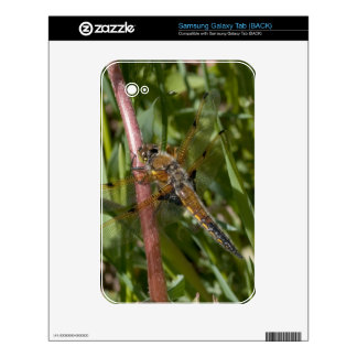 Dragonfly in the Weeds Samsung Galaxy Tab Skin